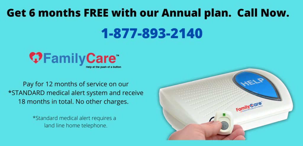 Get 6 months FREE with our Annual plan-2